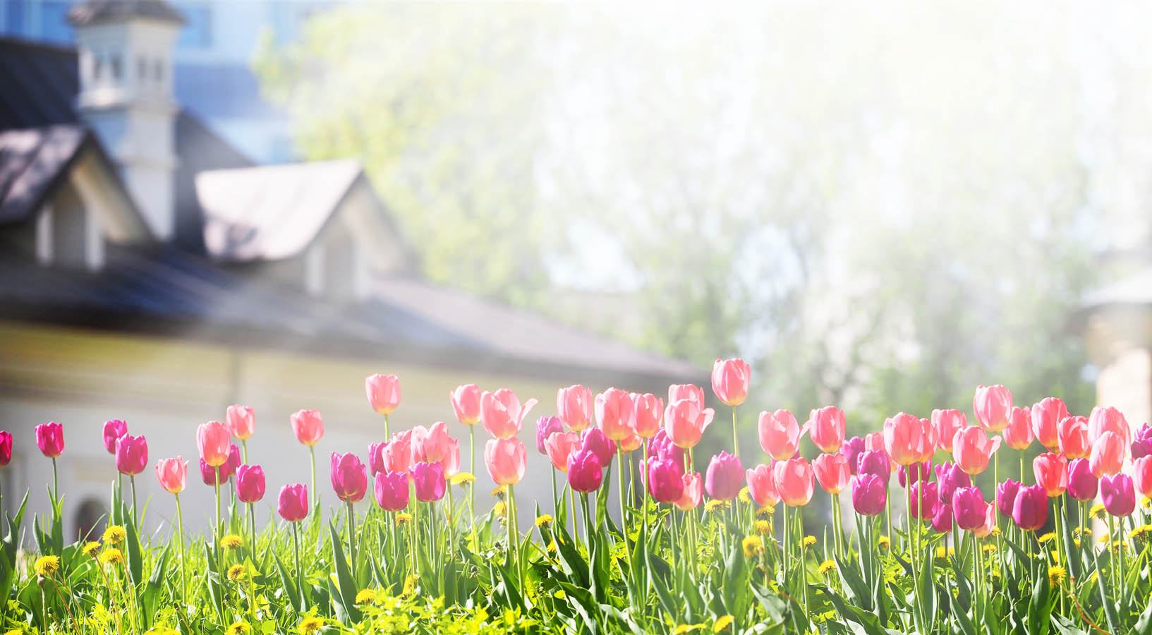 Allrite's spring checklist will be your home improvement guide.